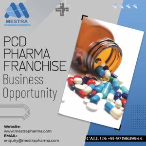Best Pharma PCD Franchise in Sitapur