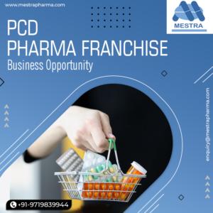 Pharma PCD Franchise in Saharanpur